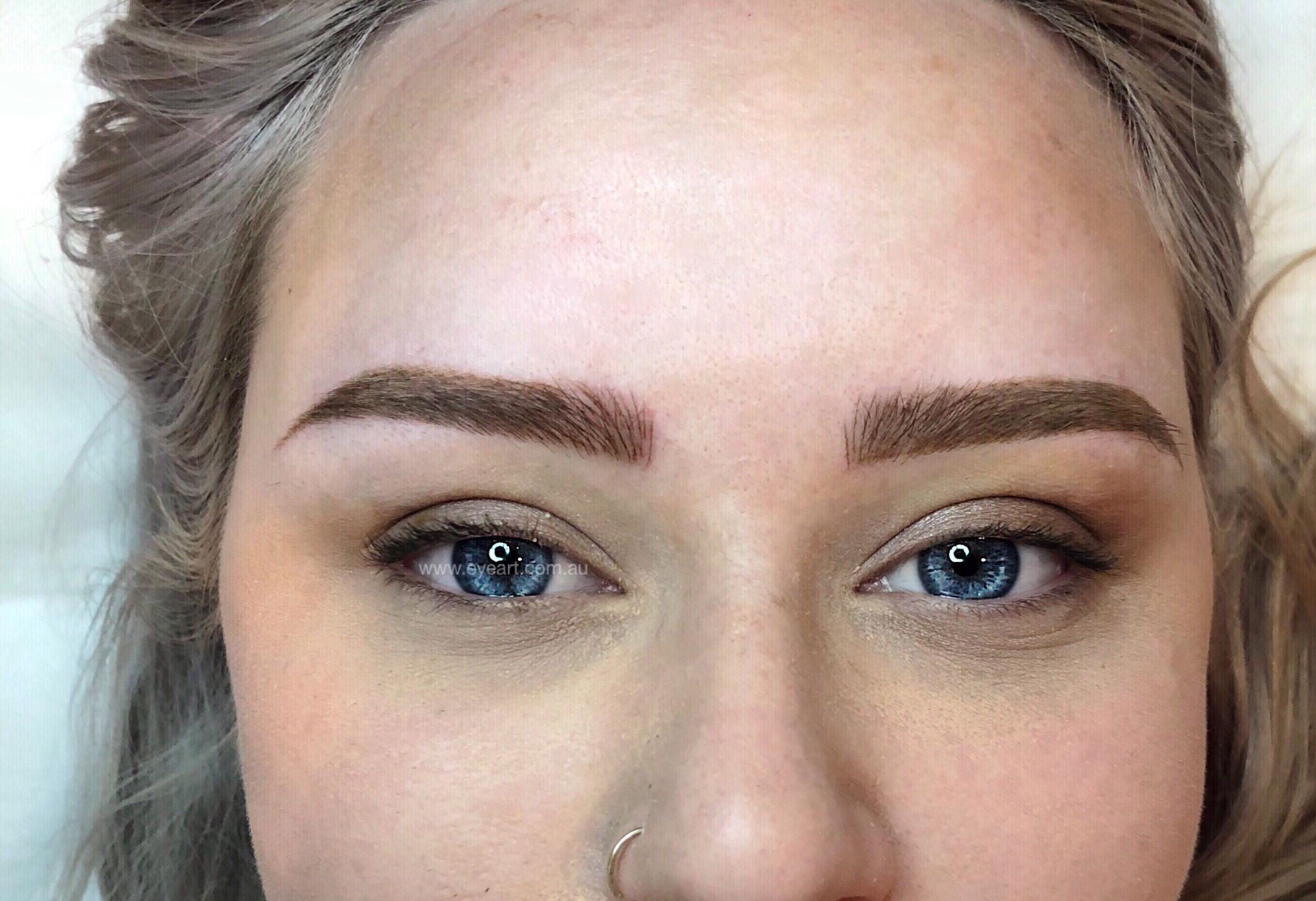 Eyebrow Tattoo Melbourne 3d Combination Eyebrow Tattoo Melbourne