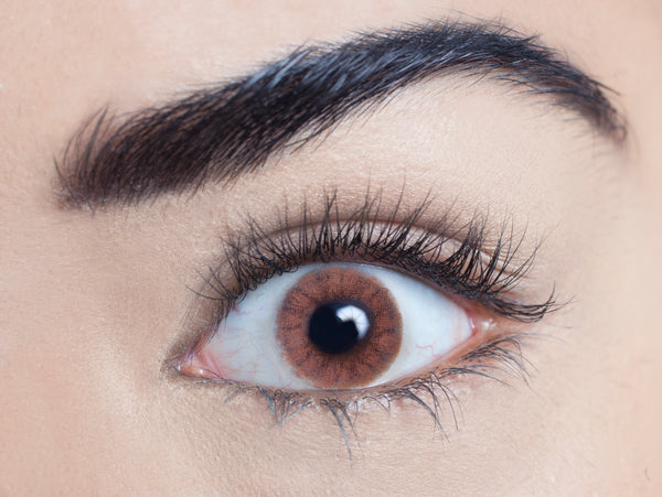Chocolate Chai coloured contact lens