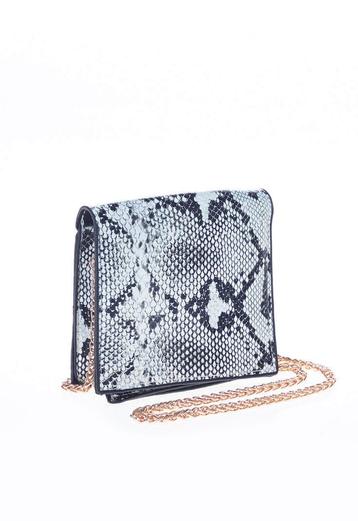 Snake Print Faux Leather Mini  Bag,
