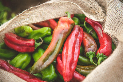 Taste Our Chile. You'll Want Seconds and Maybe Thirds