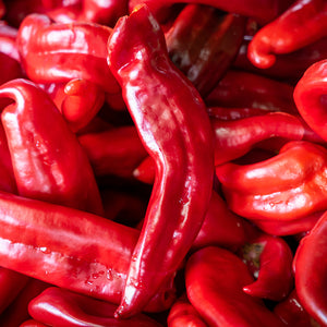 Pre-Order Fresh Hatch Red Chile Peppers