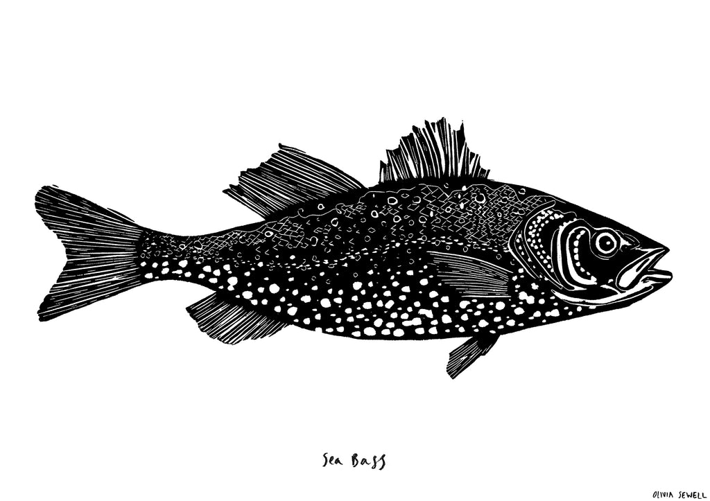 THE SEA BASS