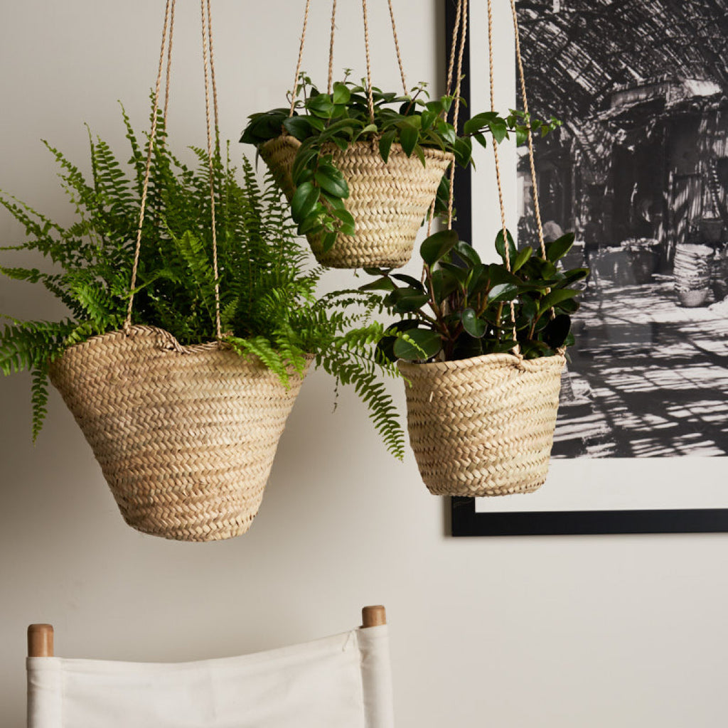 HANGING BASKETS | SET OF THREE
