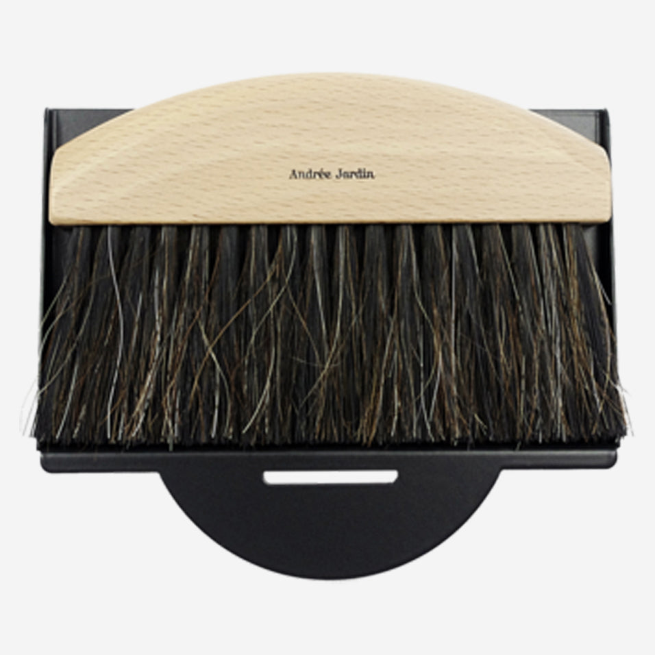 Mini Brush and Black Dustpan Set