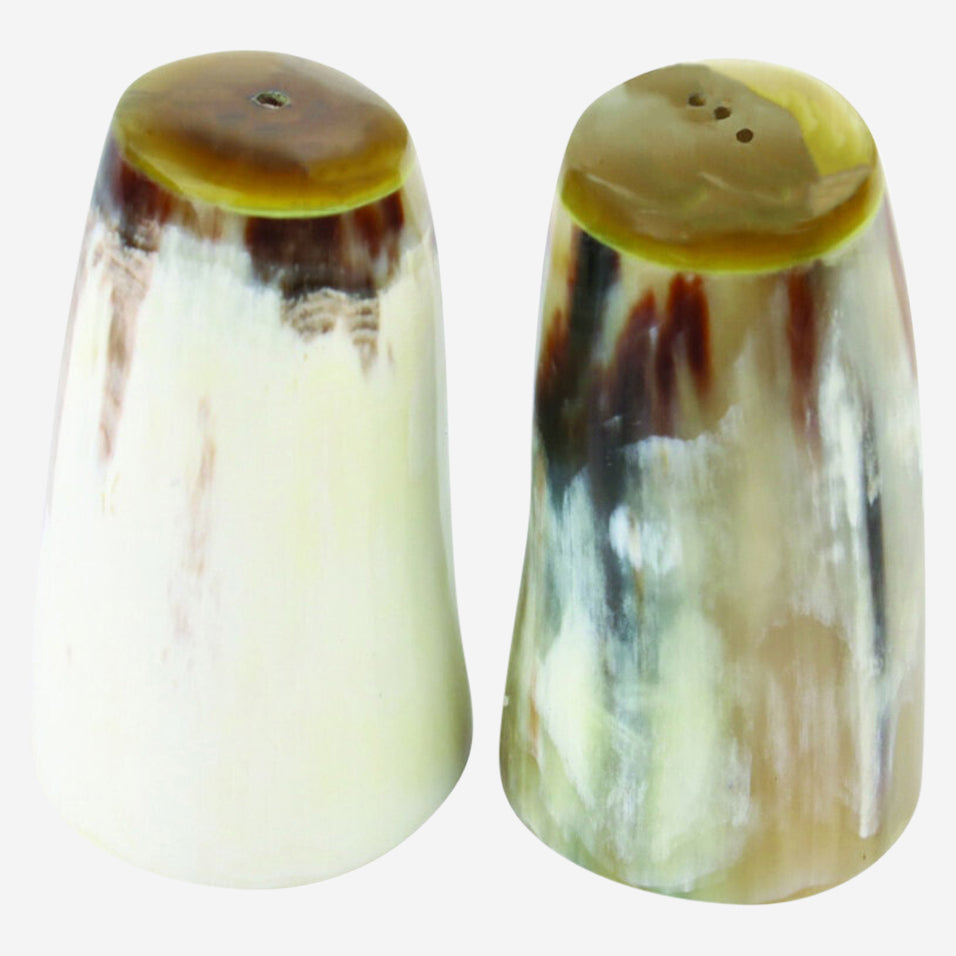 Horn Salt and Pepper Set
