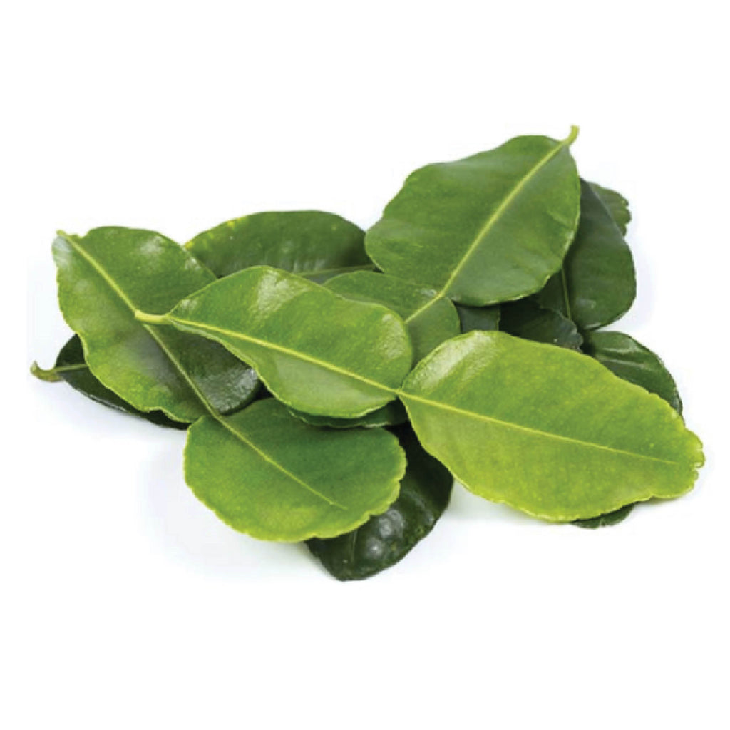 LOCAL Kaffir Lime Leaves (Bunch, 10g)