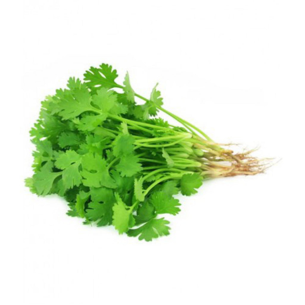 Teouma Valley Farms Coriander (Bunch 100g)