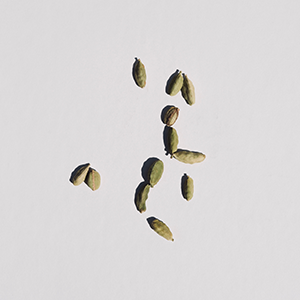 small green pods sit against an off white background