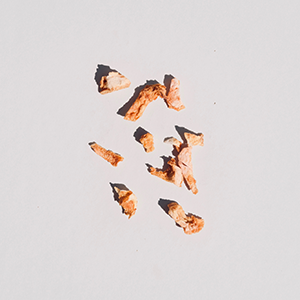 peach colored dried petals sit on an off white background.