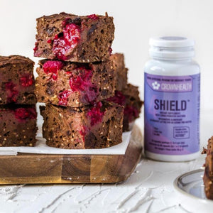 vegan brownies with natural ingredients and shield plant based probioticbottle