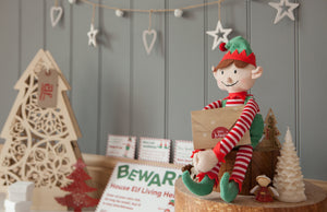 Elf for Christmas Boy & Magical Reward Kit