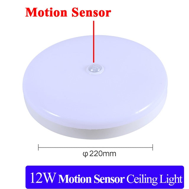Surface Mounted LED Ceiling Lamps PIR Motion Sensor Night Lighting 12/18W Modern Ceiling Lights For Entrance Balcony Corridor