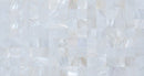 Half Sheet Sample of 3/4 Inch Crest White Shell Tile