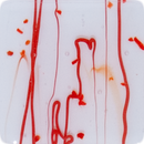 2 Inch Red Confetti Semi-Transparent Fused Glass Accent Tile