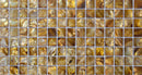 Half Sheet Sample Of 3/4 Inch Golden Brown Shell Tile