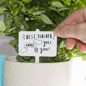 'Best Teacher Award Goes To You' Plant Marker