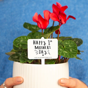 'Happy 1st Mother's Day' Personalised Plant Marker