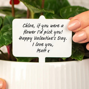 Personalised Message Valentine's Plant Marker