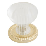 301 Acrylic Crystal Like Knob with Brass Base