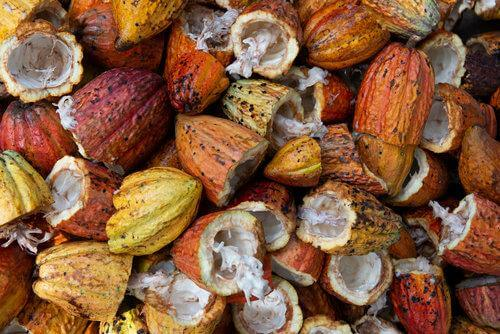 About RAW cacao