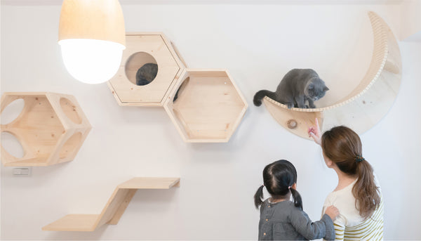 SPACE FOR THE KIDS | MYZOO Design