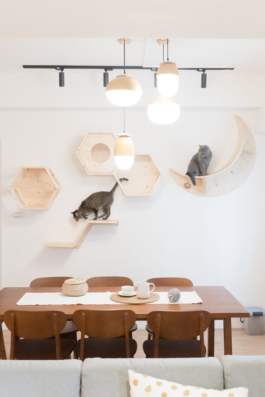 Modern floating wall-mounted climbing steps shelf perch scratch tree tower furniture Cat Post Wall Step Solid Hardwood Round or Square