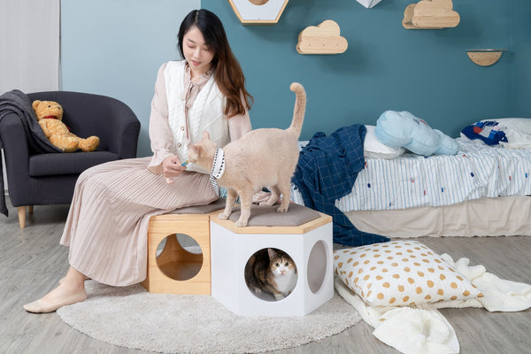 Cats and owners stay together happily with the accompany of cat-friendly furniture.