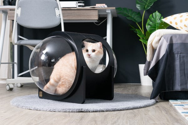 MYZOO-Spaceship Alpha (Black): Cat Bed
