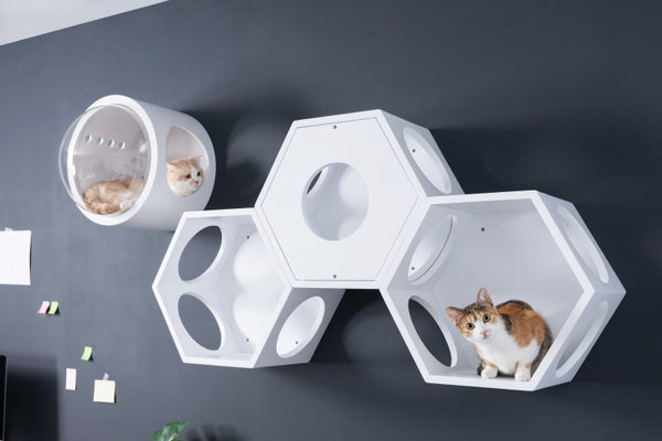 MYZOO-BusyCat(White): Wall Mounted Cat Shelves