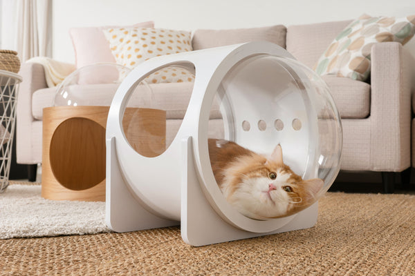 Cat Friendly Furniture, Cat Bed, Cat House, Cat Nest, Cat Cave, Wood, White, Warm, Norwegian Forest Cat
