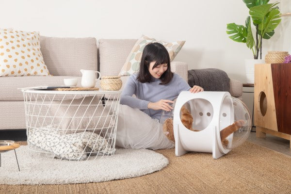 Cat Friendly Furniture, Cat Bed, Cat House, Cat Nest, Cat Cave, Wood, White, Warm