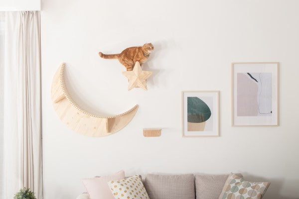MYZOO-Twinkle Star: Wall Mounted Cat Shelves, Cat Scratcher
