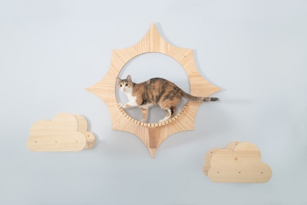 MYZOO-Solar: Wall Mounted Cat Shelves