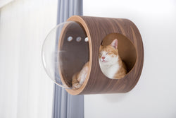 Cat Friendly Furniture, Wall mounted Cat Bed, Cat House, Cat Nest, Cat Cave, Wood, Walnut, Warm