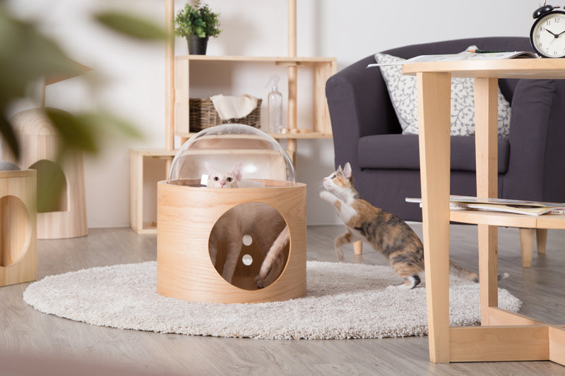 Cat Friendly Furniture, Wall mounted Cat Bed, Cat House, Cat Nest, Cat Cave, Wood, Oak, Warm