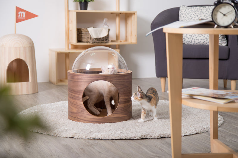 The clear acrylic dome add extend version for cats to look out.