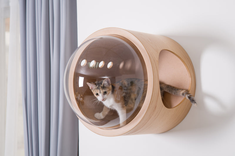 Clear acrylic dome gives a clear view for cats to look out from the floating cat bed.