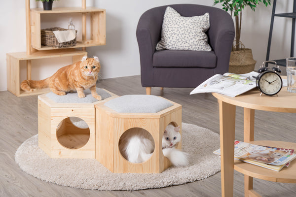 MYZOO,Busycat,Ottoman,Small Table,Cat Scratcher,Cat house,Cat Furniture, Cat Sofa