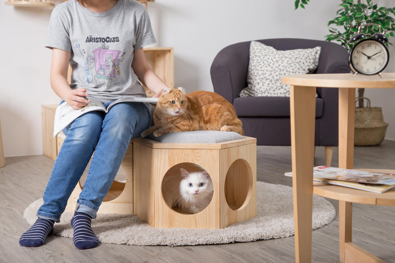 MYZOO-Busycat: Ottoman, Small Table, Cat Scratcher
