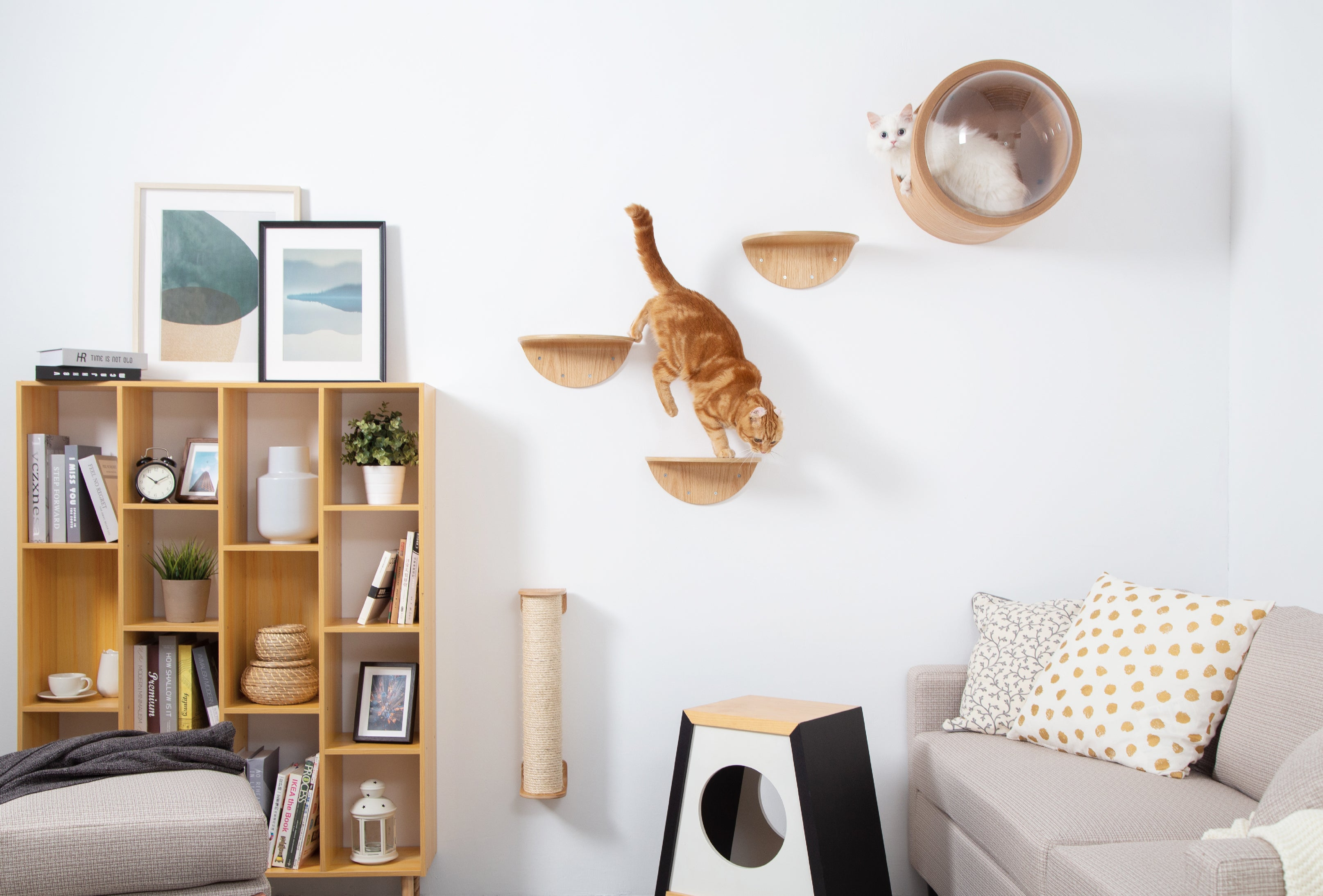(BACK-ORDER)MYZOO-Round Lack (2pcs): Wall Mounted Cat Shelves