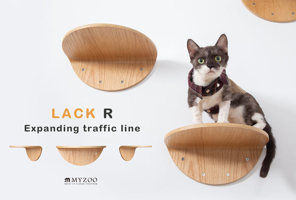 (Pre-order) Floating Round Cat Shelves | Round Lack (2pcs) | MYZOO