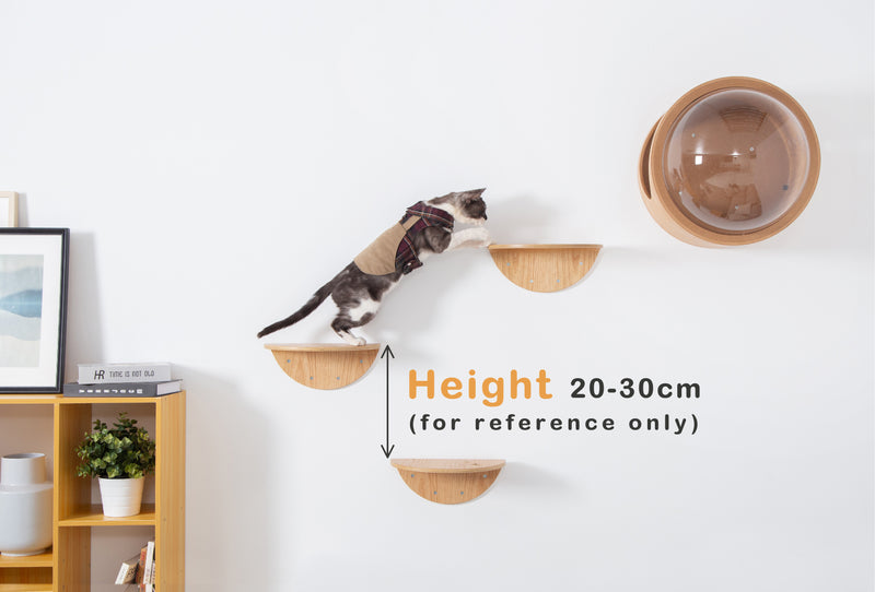 MYZOO-Lack (R, 2pcs): Wall Mounted Cat Shelves