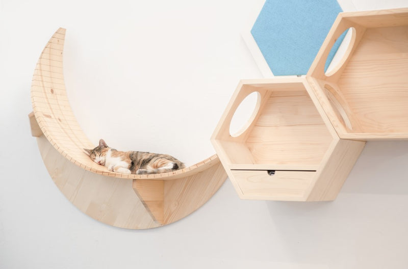 A brown cat sleeps On MYZOO Floating shelf Named Luna Because of its Moon Shape