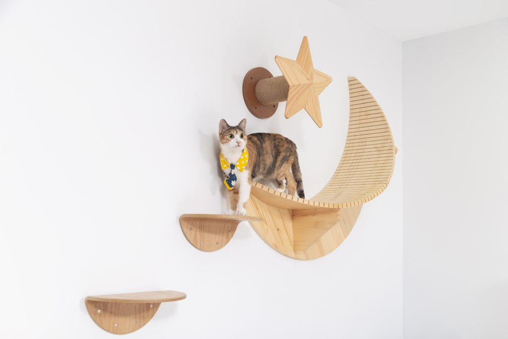 A brown cat stands On MYZOO Floating shelf Named Luna Because of its Moon Shape