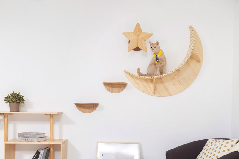 A brown cat stays on MYZOO Floating shelf Named Luna Because of its Moon Shape