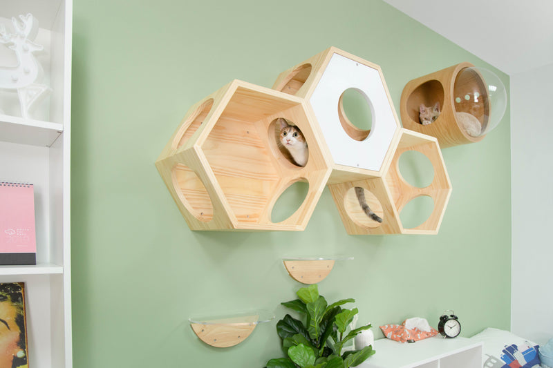 Hexagon cat furniture can build together as a cat playground for multi-cat family.