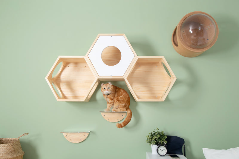 Thick wooden material board provide steady place for cats to sit and sleep.