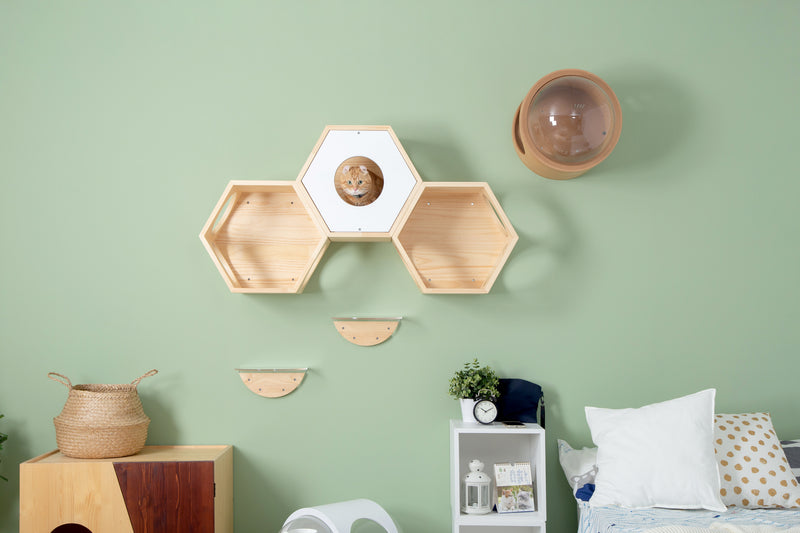 Three hexagon Busy cat bed combined together as a cat walkway. The cover plate can add a hidden place for felines.