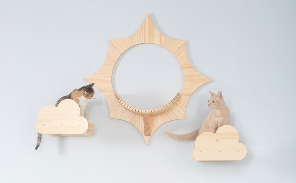 Transparent Floating Cat Shelf | Sun and Moku | MYZOO