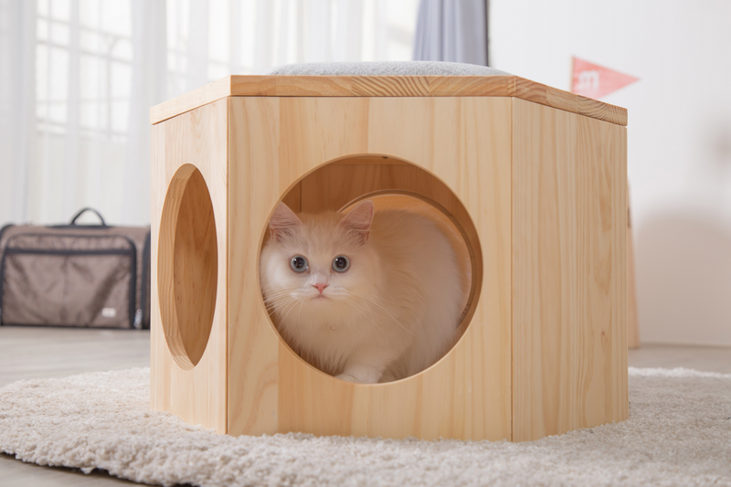 a white cat hide in a cat furniture